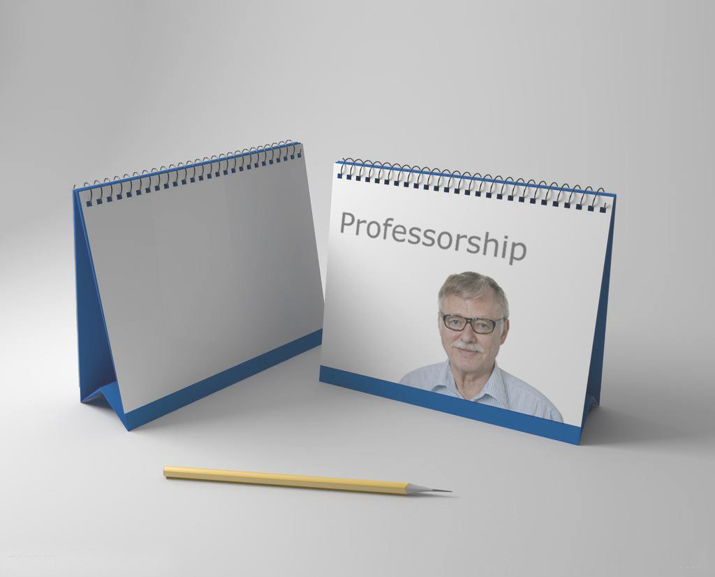 Professorship